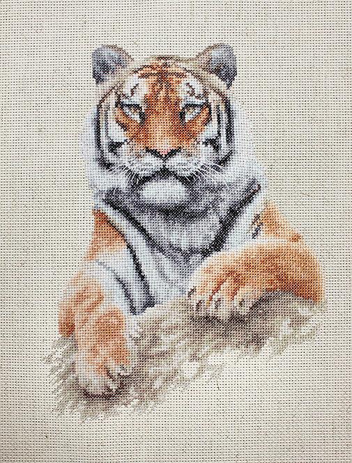 B2289 Tiger