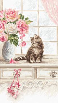 LETI 976 Kitten