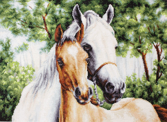Mother and son - Horses