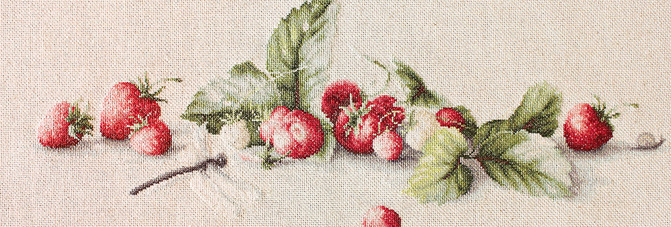 BL2254 Etude with Strawberries - Cross Stitch Kit Luca-S