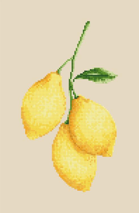 MK017 Limones - pdf
