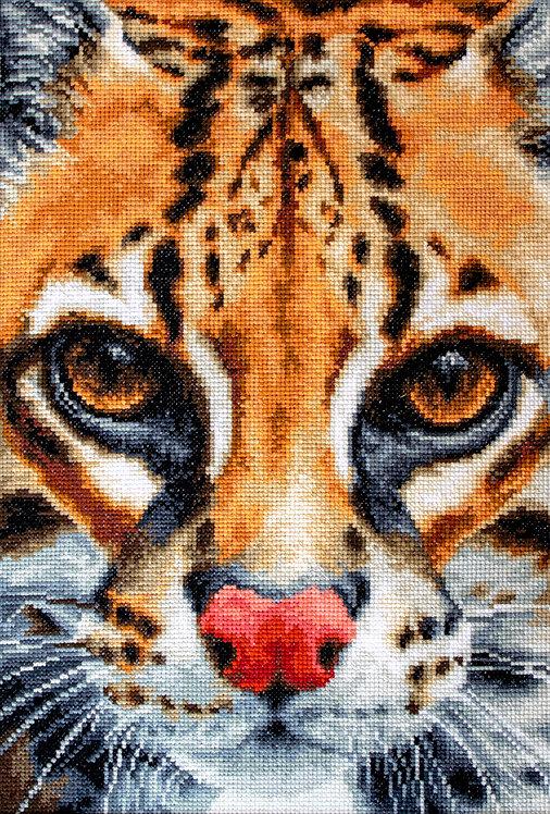 BU4008 Leopardus pardalis