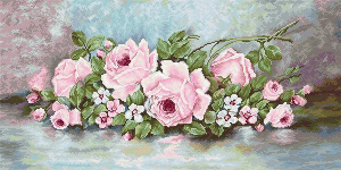 G584 Roses