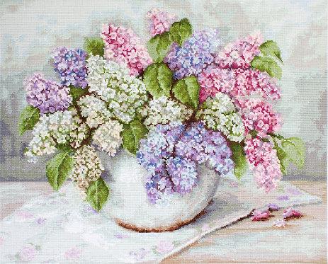 G570 Lilacs
