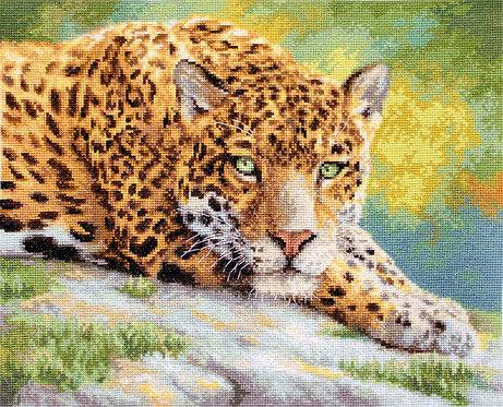 LETI 920 Peaceful Jaguar