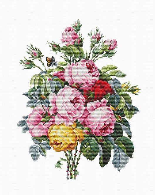 BA2372 Roses