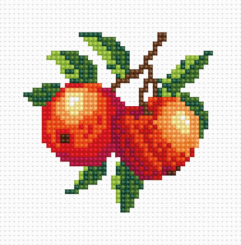 B028 - Cross Stitch Kit Luca-S