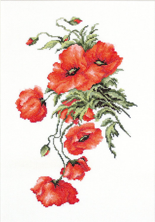 B2236 Poppies