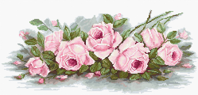 B2353 Romantic Roses