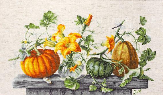 B2303 Pumpkins