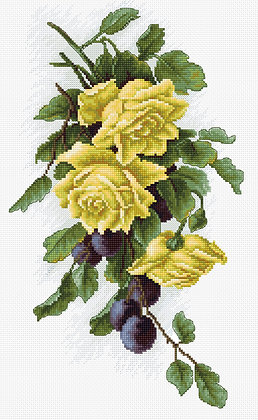 Yellow roses with plums