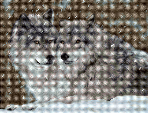 B2291 Two Wolves