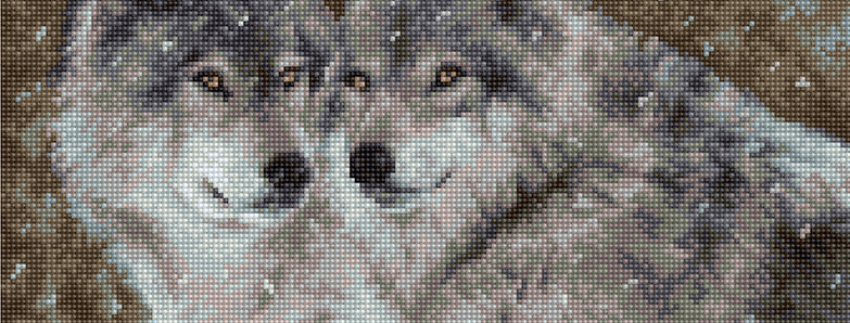 B2291 Wolves - couple - Cross Stitch Kit Luca-S