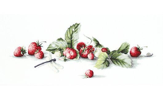 B2254 Etude with Strawberries - Cross Stitch Kit Luca-S