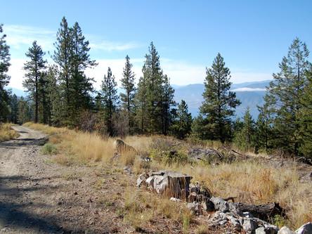 KVR trail