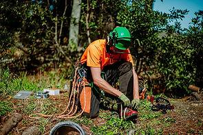 TreelandsBusinessBranding-WEBRES-47.jpg
