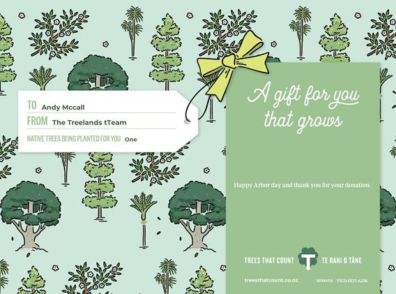 TTC Gift CertificateAndy Mccall.bmp