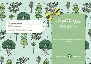 TTC Gift Certificate 70Debra Dudley 2nd.
