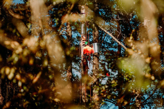TreelandsBusinessBranding-WEBRES-42.jpg