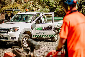 TreelandsBusinessBranding-WEBRES-247.jpg