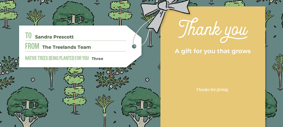Sandra TTC Gift Certificate 72344.bmp