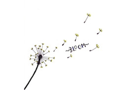 Dandelion: The Flower of Bloom