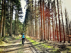 Luxembourg MTB Guided Tour