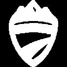 Biketours Logo.png