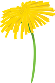 flower-4617854_1280_edited.png