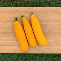 Organic Yellow Zucchini