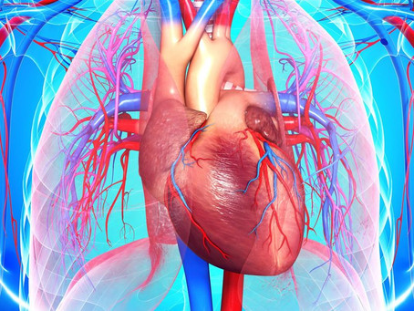 Coronary Artery Disease. You Might Be at Risk!