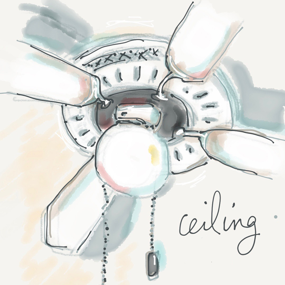 Ceiling Fan SQ Icon.jpg