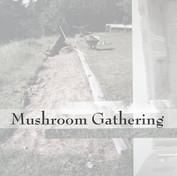 Mushroom Gathering Tile v3.jpg