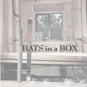 Bats in a Box Tile v3.jpg