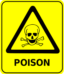 How Poisonous Are You To Your Dog?