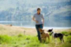 Penticton Dog Trainer Simone Krebser