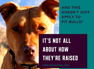 It's Not All About How They're Raised... and that doesn't just apply to Pit Bulls