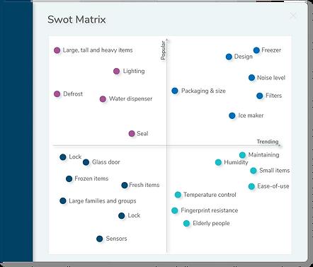 SWOT matrix.png
