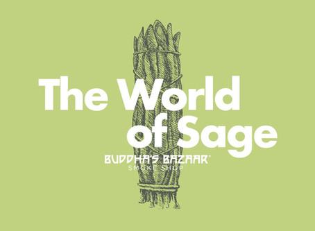 The World of Sage