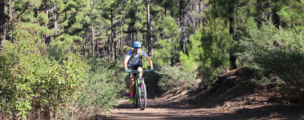 Copia de mountain bike tenerife.jpg
