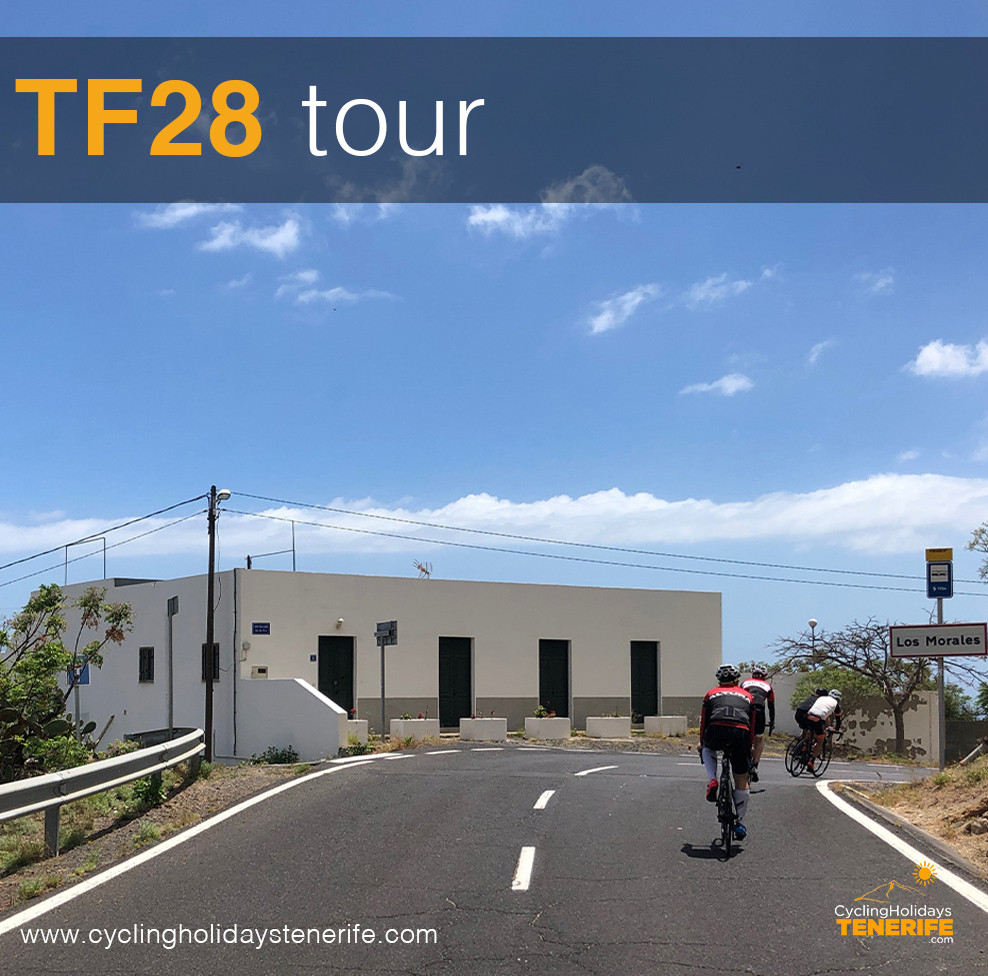 TF281a1.jpg