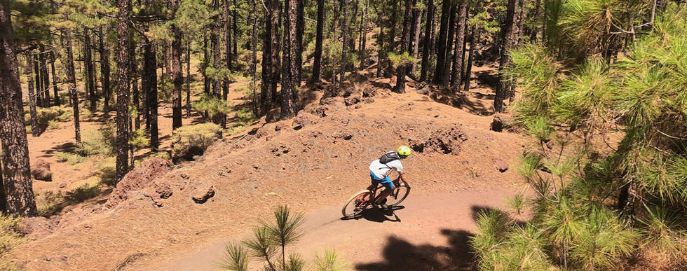 mtb guided tour Tenerife.jpg