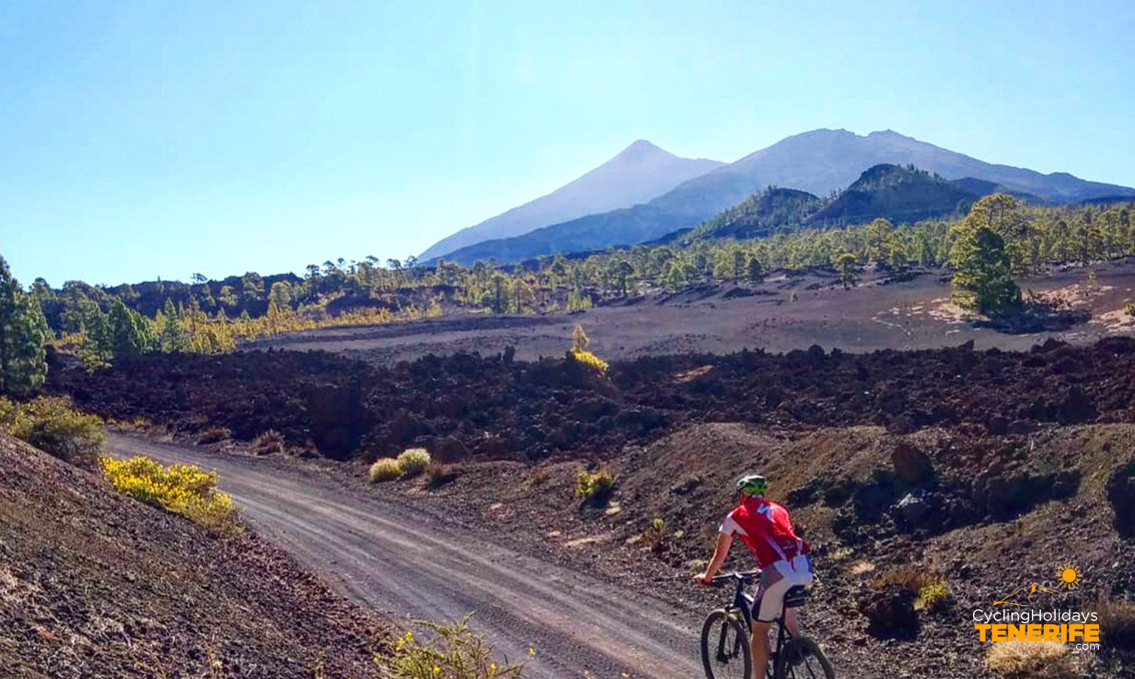 mountain bike in tenerife.jpg