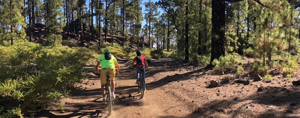 mtb tenerife guided tours.jpg