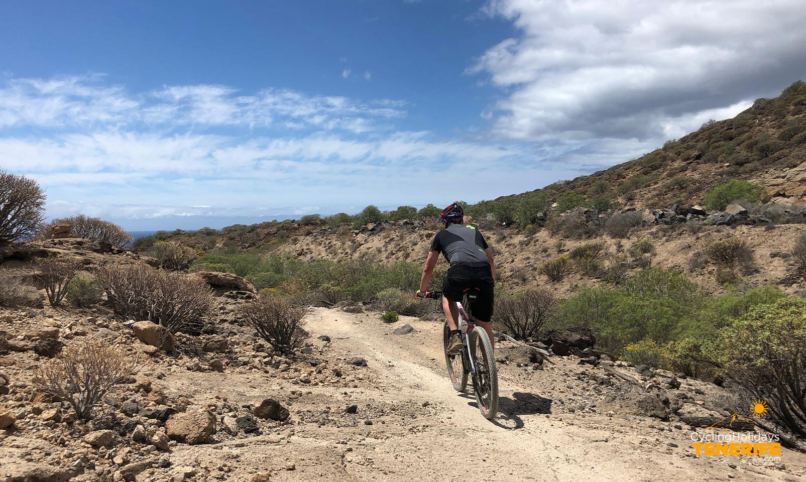 El Medano bike tours.jpg