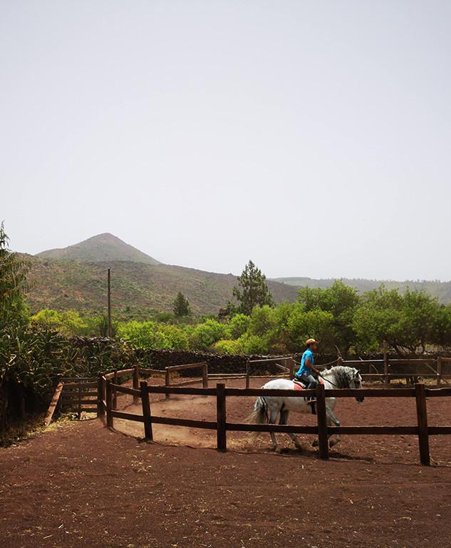 paseos-caballo-casona-del-patio-teide.jp