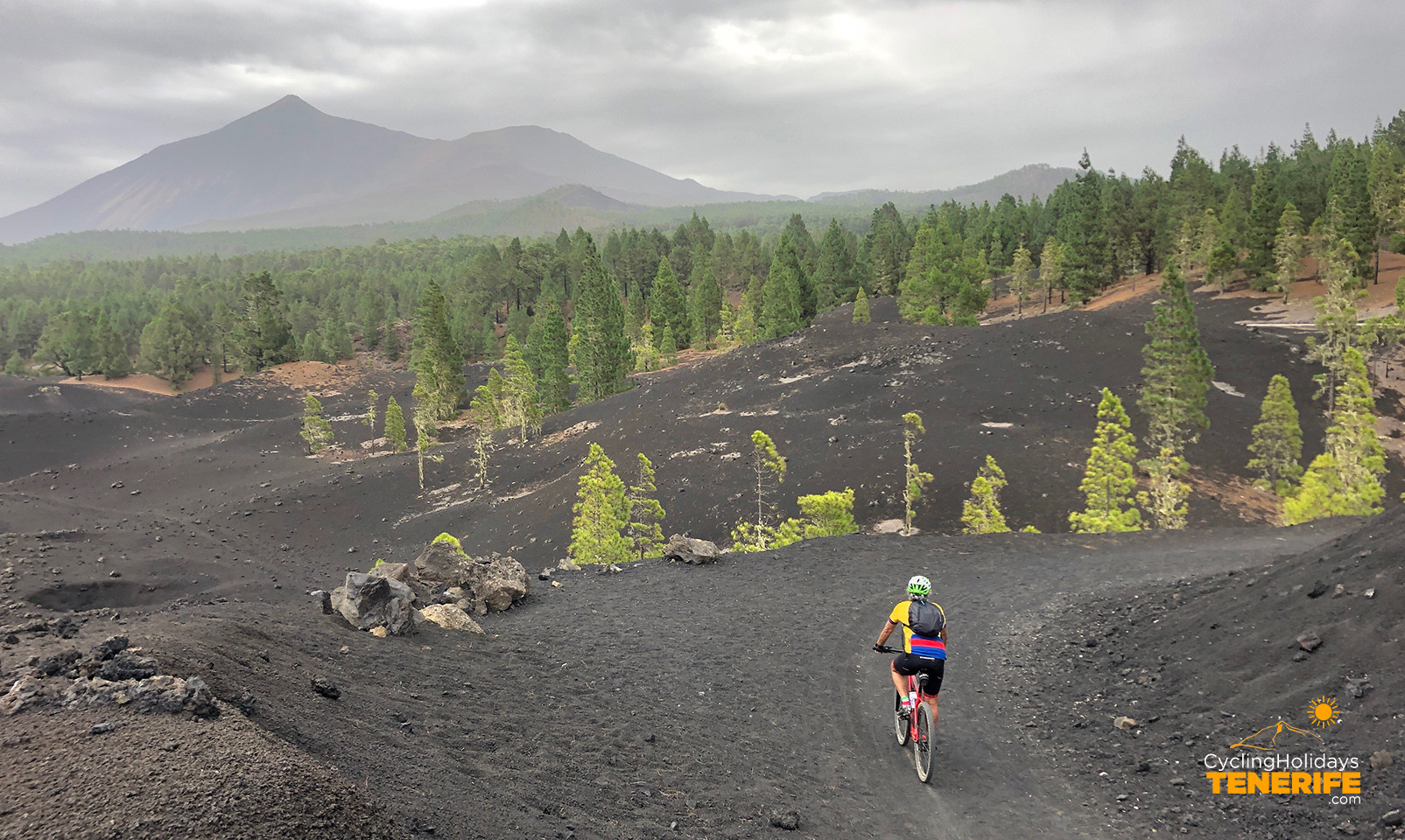 guided MTB tour canary Islands.jpg