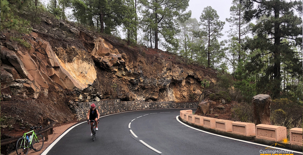 bike rental and tours tenerife.jpg