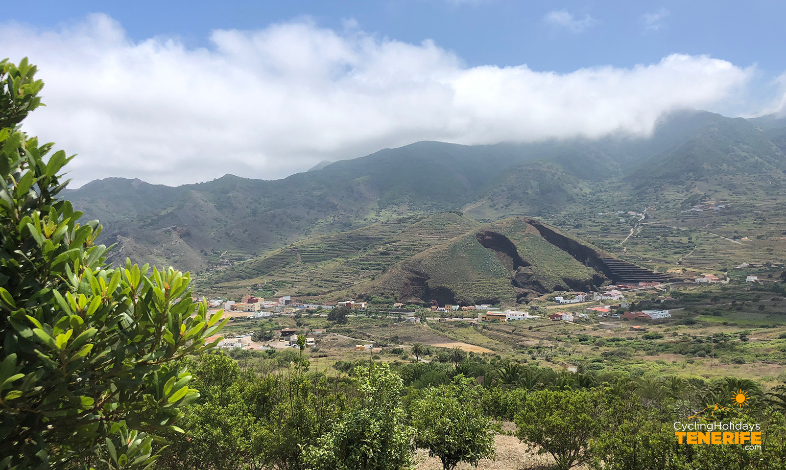 buenavista valley.jpg