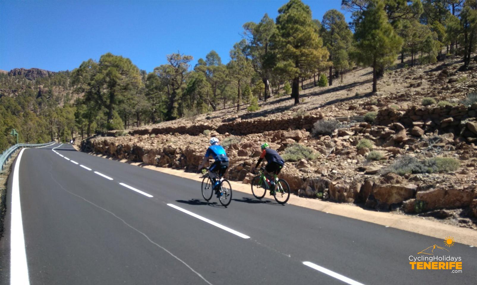 road bike tours tenerife.jpg